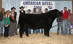 2009 American Royal in KC